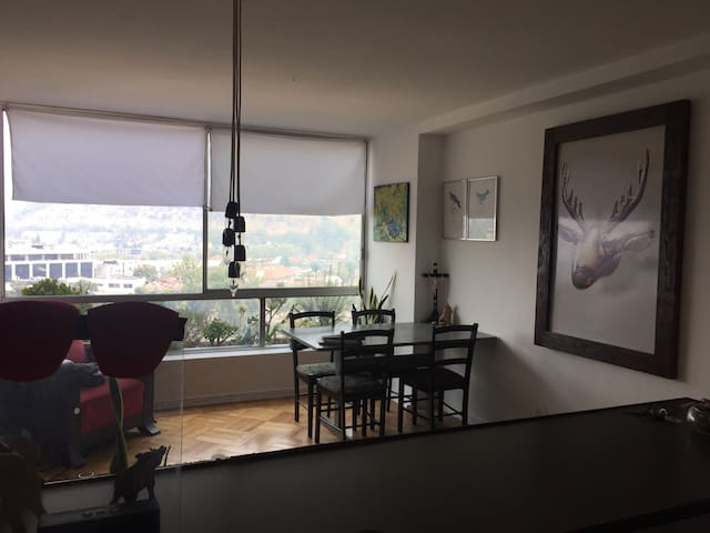 BEAUTIFUL APARTMENT WITH SPECTACULAR VIEWS!!!! - Providencia - Apartment