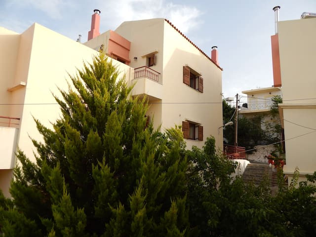 Tradinional apartments in Anogeia Psiloritis Crete - Anogia - Appartement