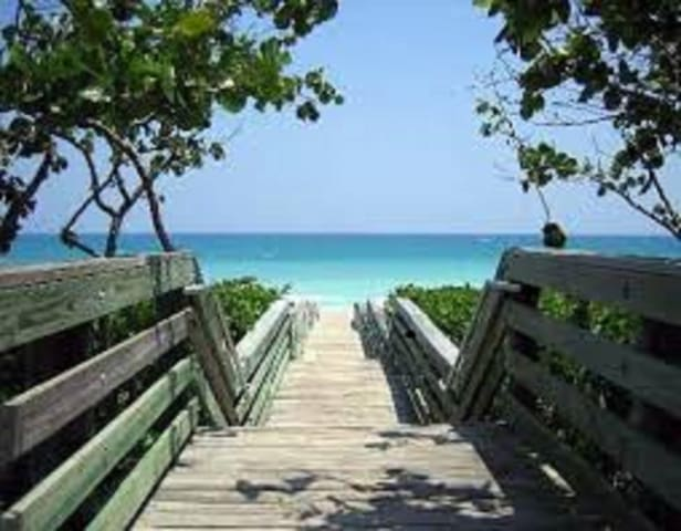 Beautiful condo by the beach