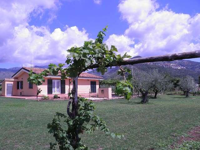 Domus Cocta - Relaxing countryside escape - Provincia di Latina - บ้าน