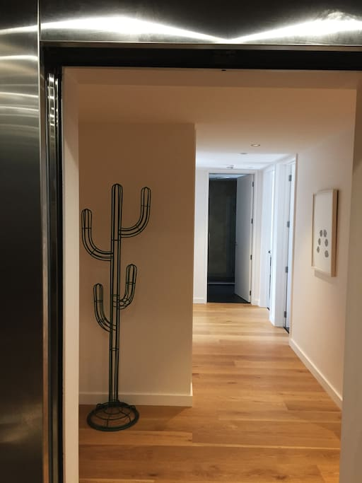 Private lift entrance into apartment