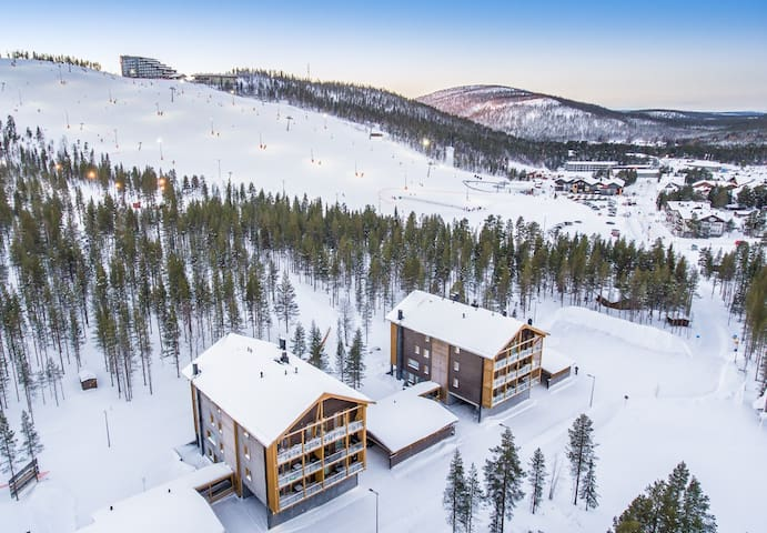 Levi Central Ski Tunturinlaita B5 apartment