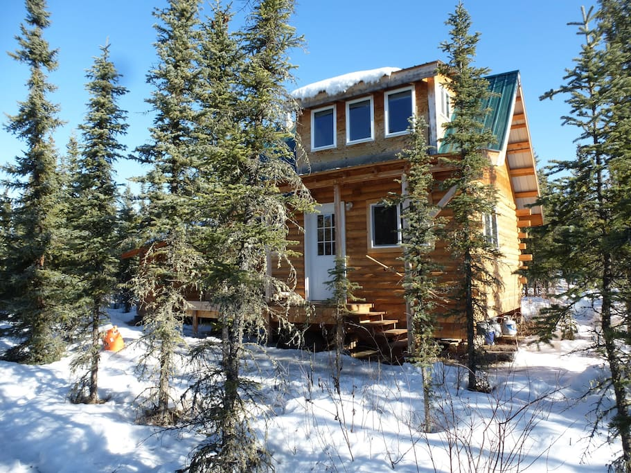 Aurora pond cabin and winter dog sled rides cottages for for Winter cabin rentals colorado