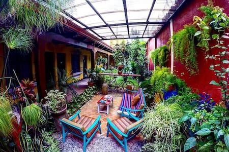 Homestay  in Antigua - Antigua Guatemala