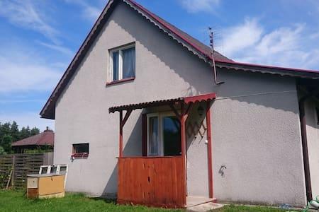Dom Bursztynek - domek (sad) - Junoszyno