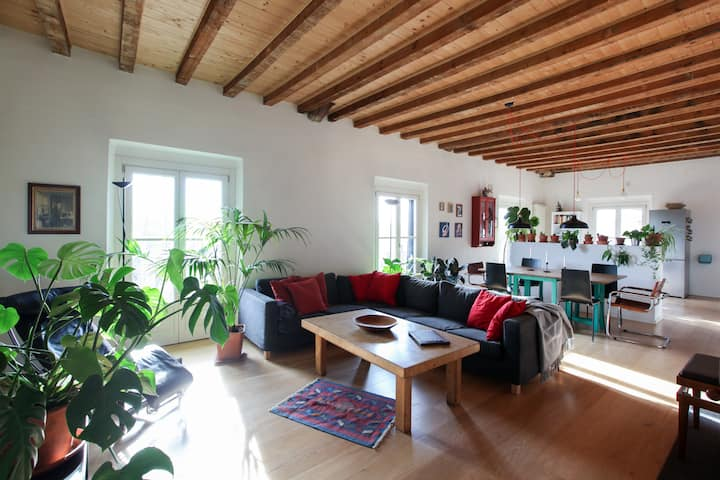 Charming apt with a stunning view on Sempione Park