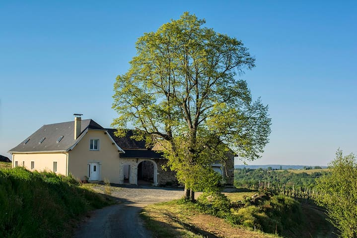 Bearnaise Farm in the heart of Jurançon - Monein - House