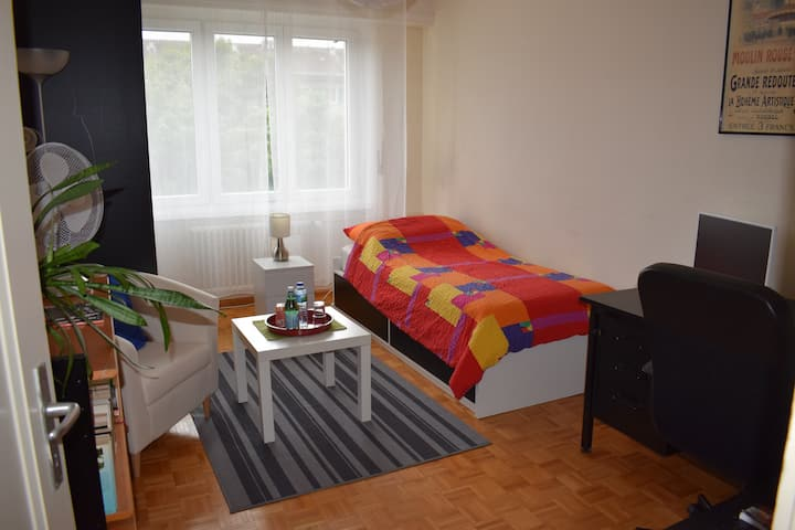 Large and cosy room close UN and railway station