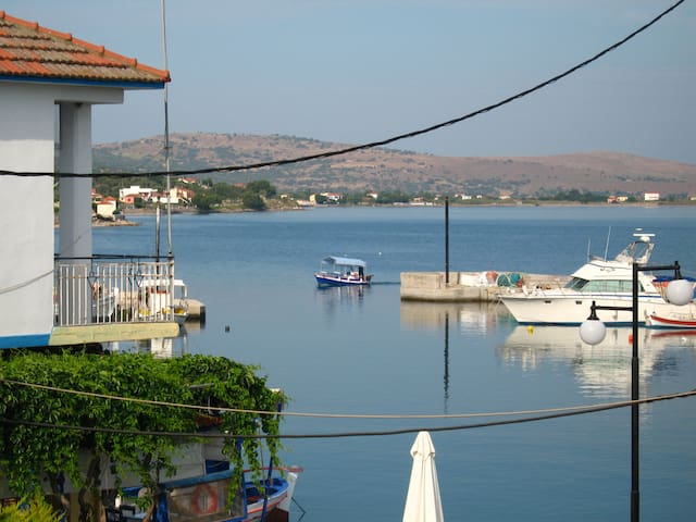 Room with a view - at the fishing harbour