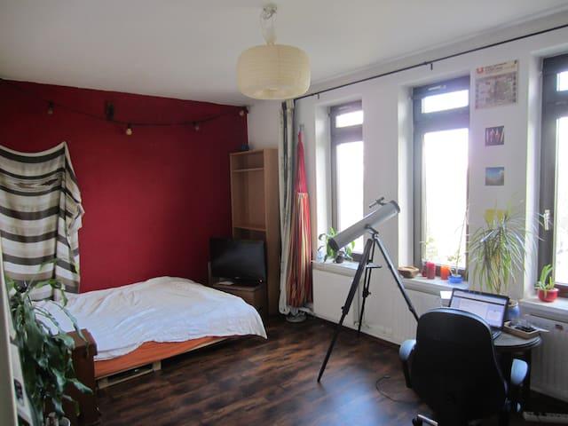 Gemütliches WG-Zimmer Innenstadt - Rostock - Lägenhet