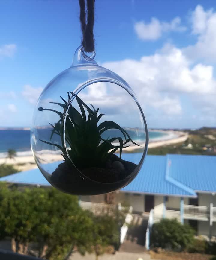 Happy Residence - Tortola