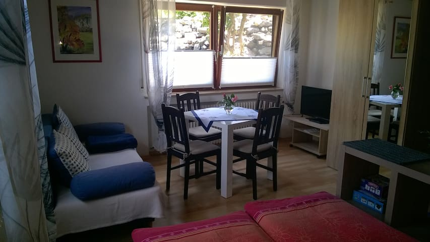 Sunny 2-Room Flat with Terrace - Kirchberg an der Iller - Appartement