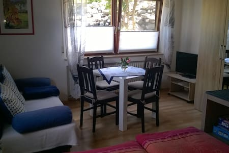 Sunny 2-Room Flat with Terrace - Apartmen