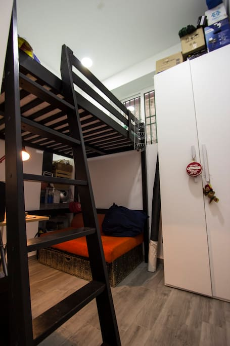 Room with Big Loft Bed and closet