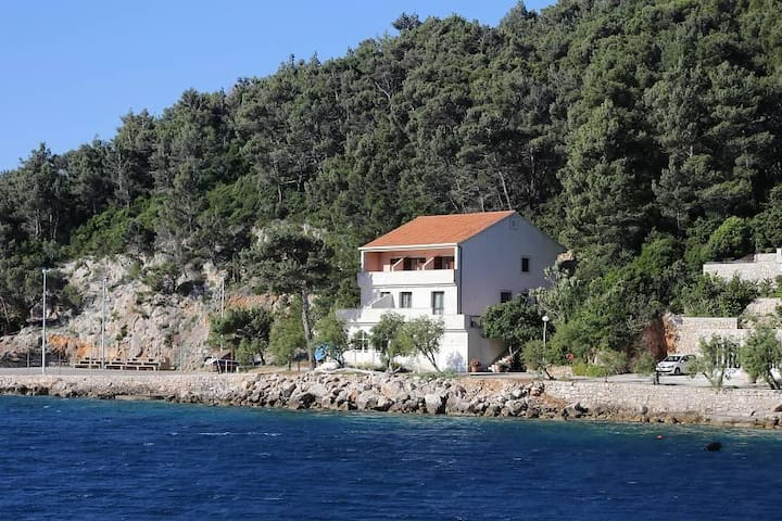 Studio flat near beach Trstenik, Pelješac (AS-10110-b) - Trstenik - Other