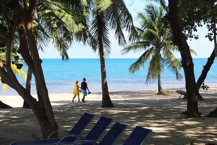 Beach Bali Style In Private Dive Resort