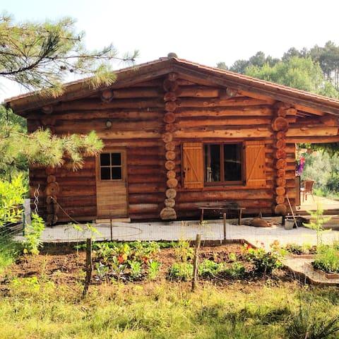 Farm Les Farges en campagne - Neuvic - Huis