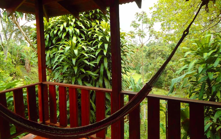 Patio overlooking jungle and Fortuna River