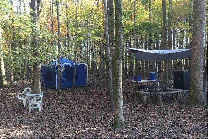 Maple Glen at Camp Sherwood Rustic Retreat