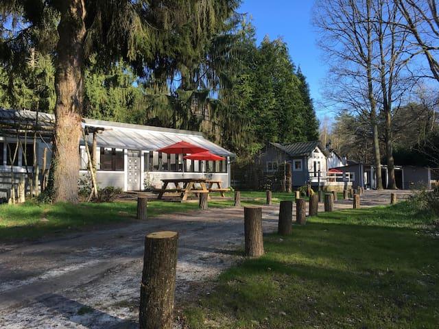 les 3 Gîtes - Cottage + chalet - Noisy-sur-École - บ้าน