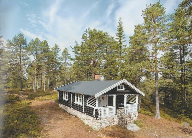 Cabin w/ hiking and crosscountryskiing