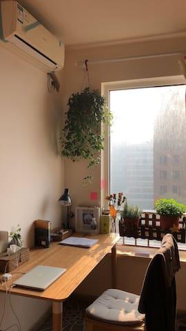 一室户带厨房,空间独立,生活便利,近1/3/12号线、中星城、日月光、上海南站、上师大,暑期长租优惠