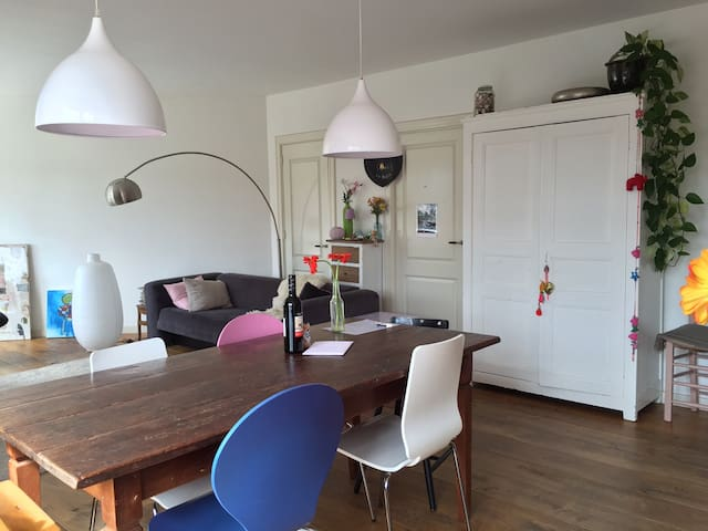 Spacious apartment with sunny roof terrace - Amsterdam - Flat