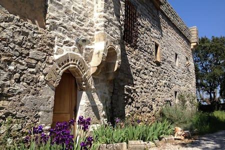 Maison de charme entre mer et Cévennes/Montpellier - Viols-le-Fort - Rumah