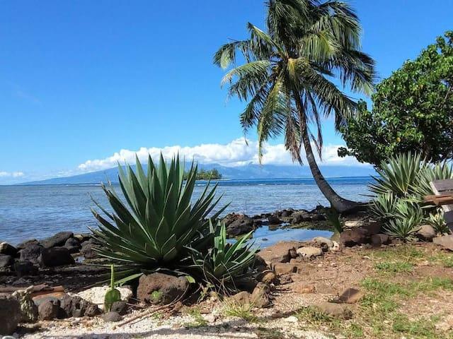 CHAMBRE Lagon Bleu ocean view tahiti