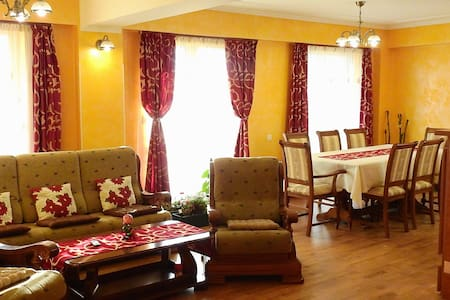 Exquisite vila apartment 5 minutes next to Suceava