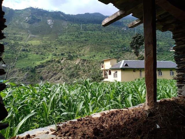 Zen Hamlets Farm stay by Ravi river Chamba Valley