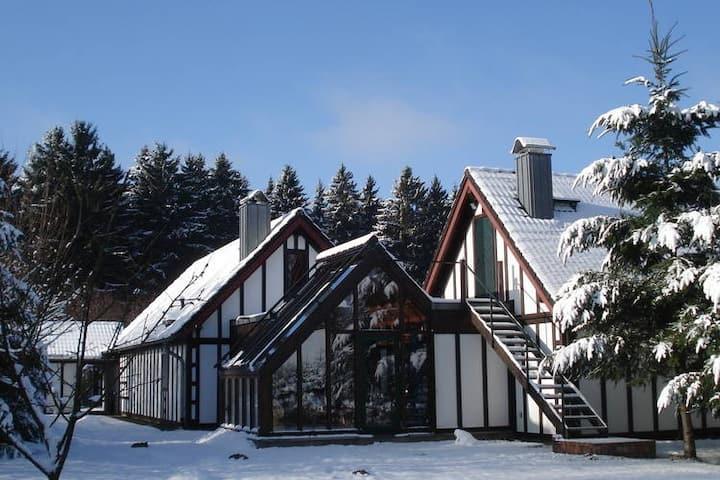 Modern Holiday Home in Bütgenbach near Forest