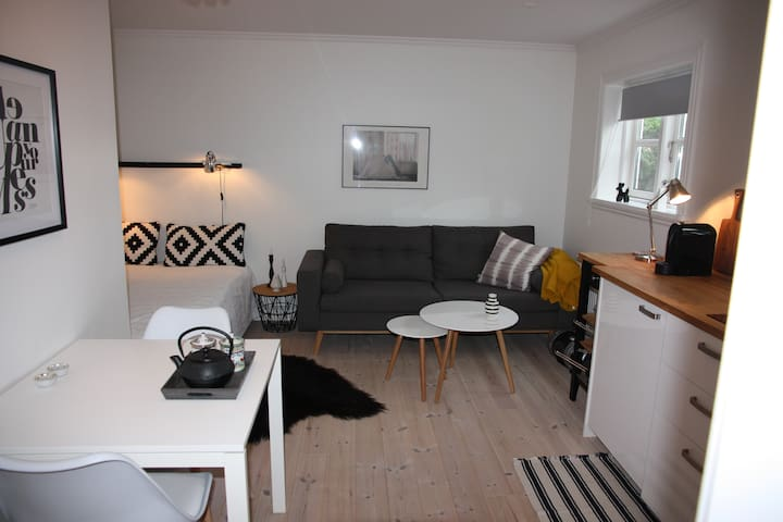 Bright, warm and cosy 2 room apartment in Torshavn - Tórshavn - อพาร์ทเมนท์