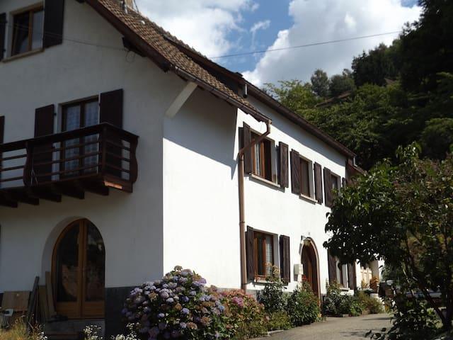 Chambres d'hôtes dans la vallée de Kaysersberg