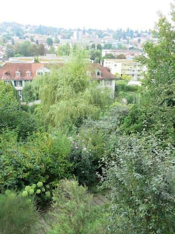 Blick ins Grüne bei Basel - Binningen - Talo