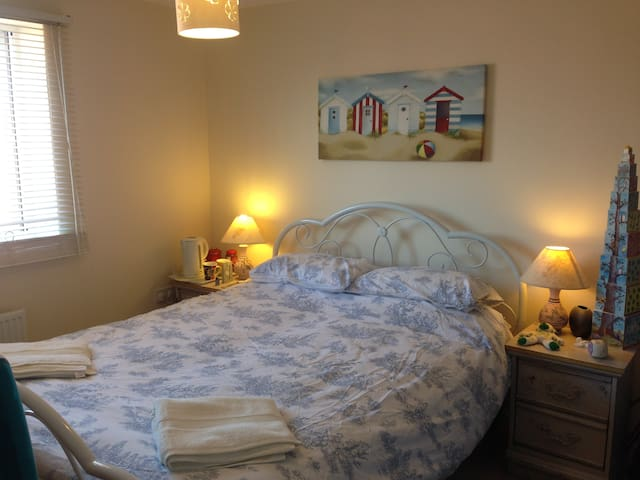 Spacious en-suite double room in great location. - Exeter - Townhouse