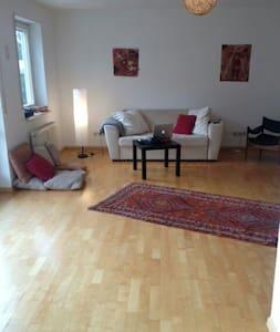 Schöne  2 Z. Wohnung 3 km von Basel - Grenzach-Wyhlen, Baden-Württemberg, DE - Appartamento