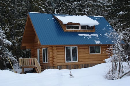 Blue Heron Cabin - Slocan - Dom