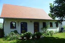 Fuchs & Hase am Kummerower See