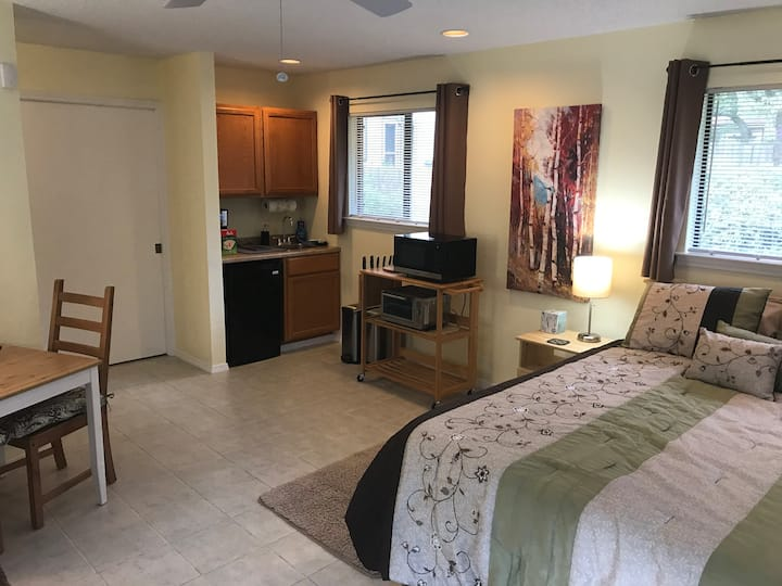 Bright, spacious efficiency apartment in NW Austin