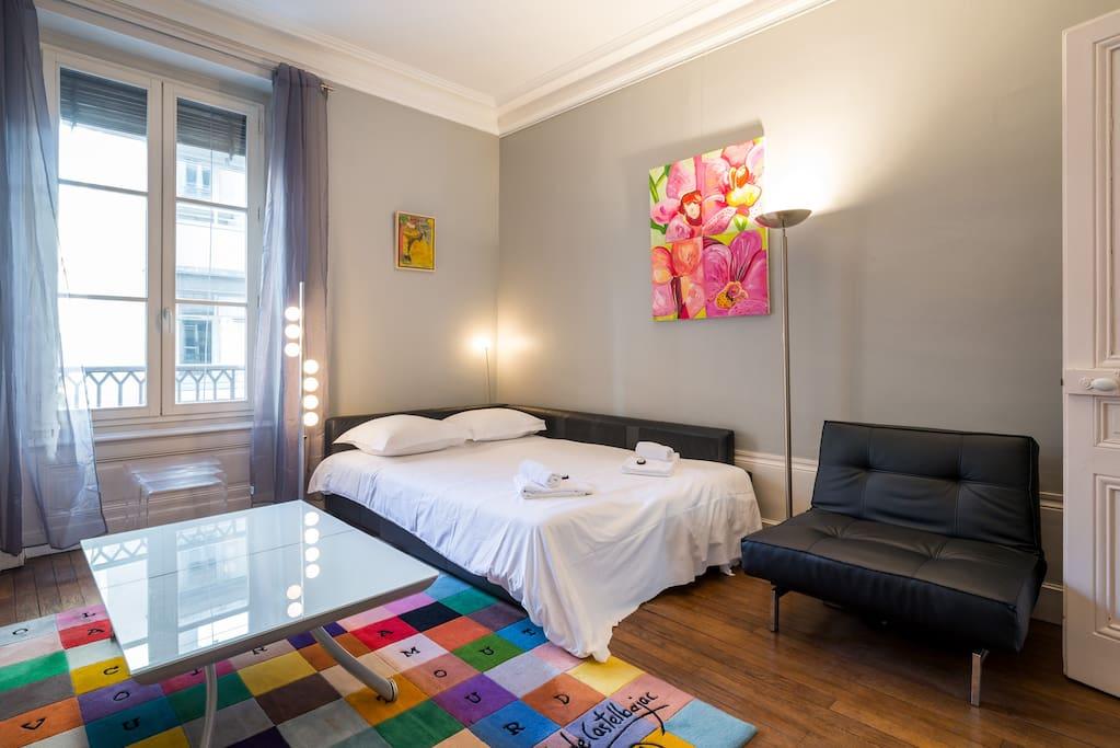 salon avec canapé lit double