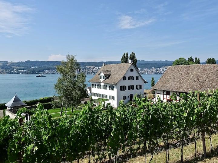 Barocker Landsitz am Ufer des Zürichsees
