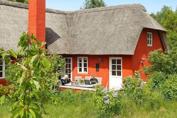 Cozy Holiday Home in Jutland with Sauna