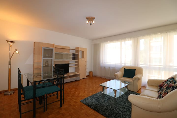 Beautiful 1 Bedroom apartment located in Champel
