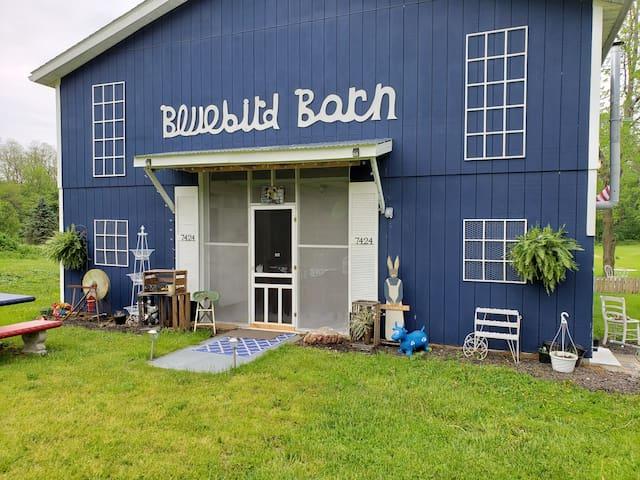Bluebird Barn  - Bluebird Room