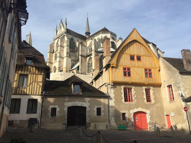 Appartement Atypique, chaleureux - Auxerre - Apartment