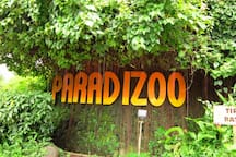We are near Paradizoo