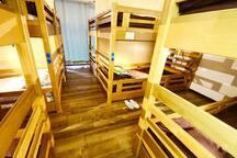 Shared dormitory rooms accommodate 10-12 people in a room.  ドミトリールームは一部屋に10名-12名がお入り頂ける大きいお部屋でございます。