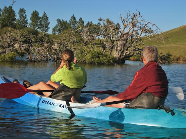Kayak the Lake Wildlife Refuge.