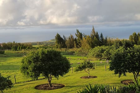 Aloha Cottage Upcountry Epic Views in Kohala - 霍维(Hawi) - 小木屋